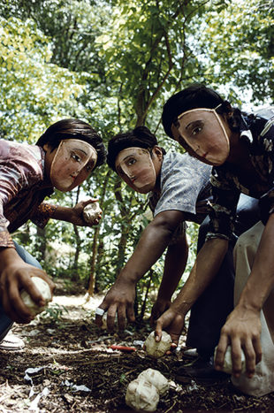 NICARAGUA. June, 1978. Youths practice throwing contact bombs in forest surrounding Monimbo.