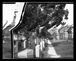 Cavalry Cemetery by Daniel Temkin