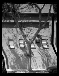 Silver Lake (Shadows) by Daniel Temkin