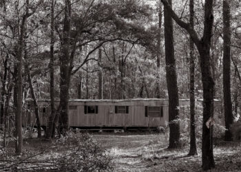 Trent Bozeman, Untitled (Trailer Surrounded), from Gullah In Root, 2020