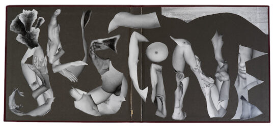 Justine Kurland, Nudes, 2021