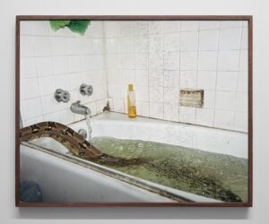 Untitled (Bathtub), 2019